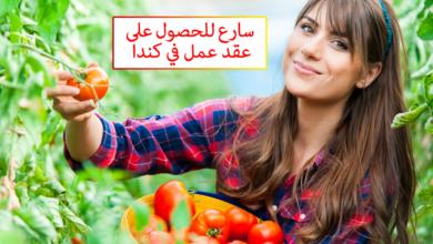 https://www.hajir.info/